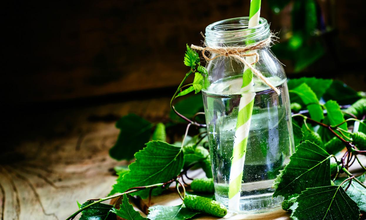 Вода от брезово дърво при грижата за косата. Свойства, ползи и ефекти